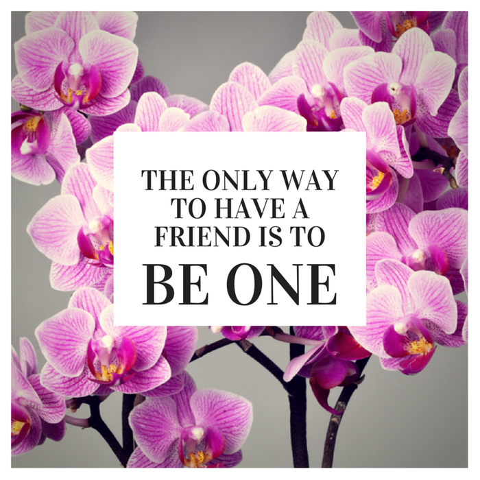 Image result for friends and orchids quotes