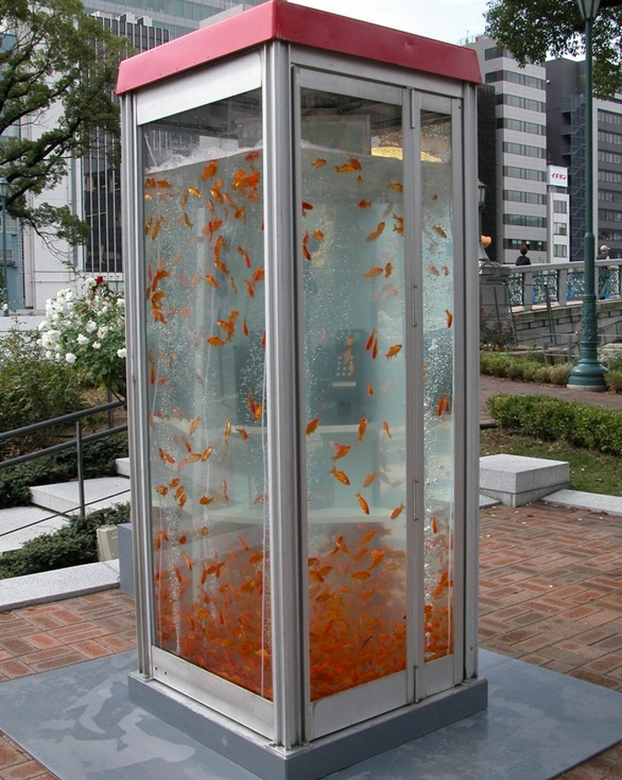 Phone booth fish tank